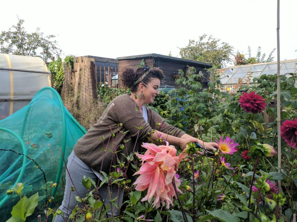Allotment Gardener